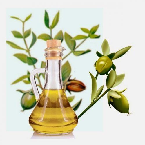 Tinh dầu jojoba được đánh giá rất tốt