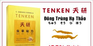 Tác Dụng Của Đông Trùng Hạ Thảo Tenken