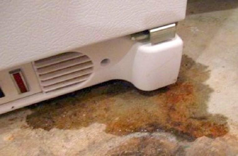 Tủ lạnh chảy nước ở ngăn làm mát