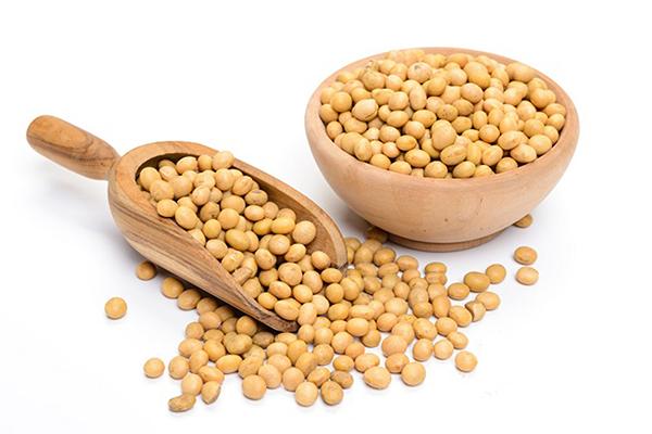 Hướng dẫn cách tự làm bột mầm đậu nành tại nhà chất lượng